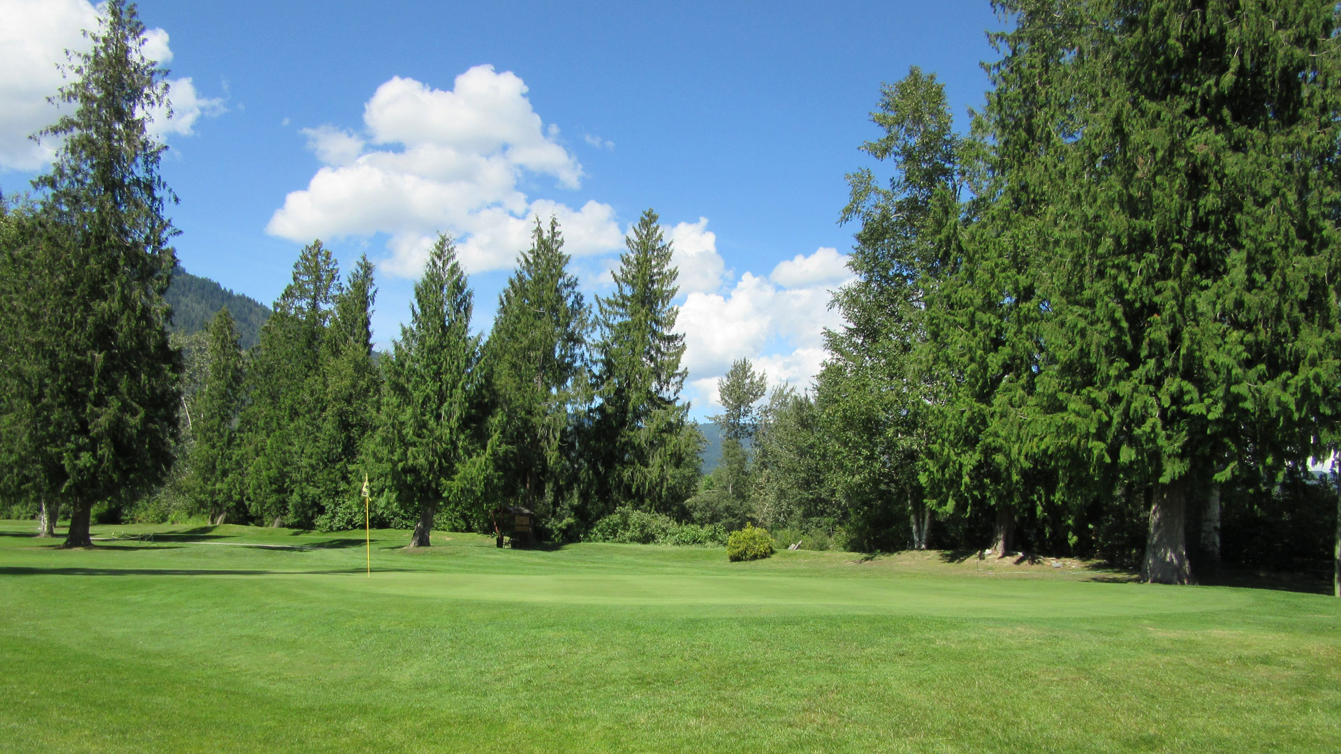 Eagle River Golf - Hole 2 Green