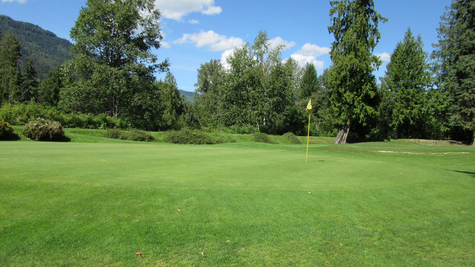 Eagle River Golf - Hole 3 Green