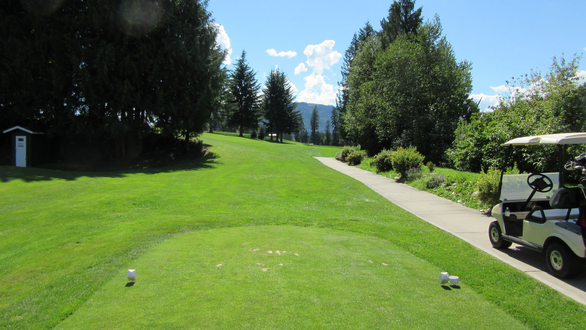 Eagle River Golf - Hole 4 Tee