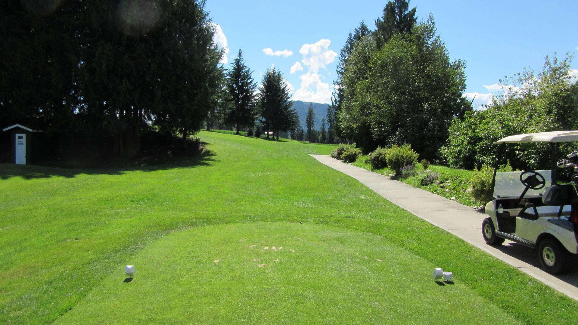 Eagle River Golf - Hole 4 Tee