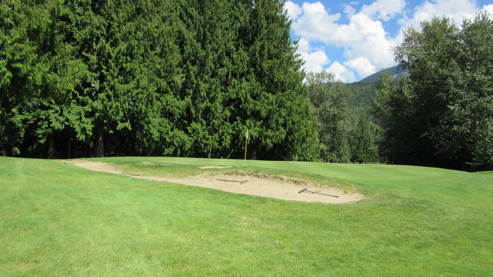 Eagle River Golf - Hole 5 Green