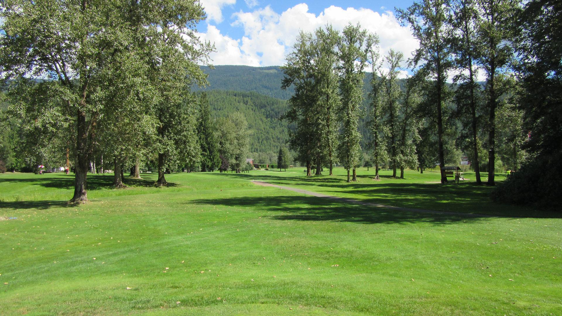 Eagle River Golf - Hole 6 Tee